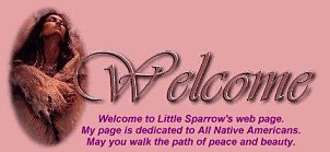 Little Sparrow Banner